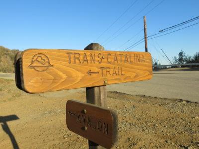 Trans Catalina Trail
