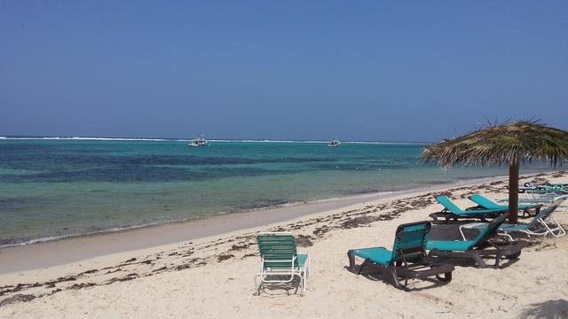 Tampa Bay S Best Beaches